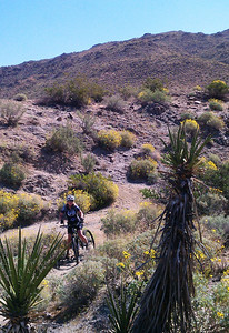 Murray Mountain Goat Trails ride - Day 1, right before we got lost in the Sand Wash from Hell!