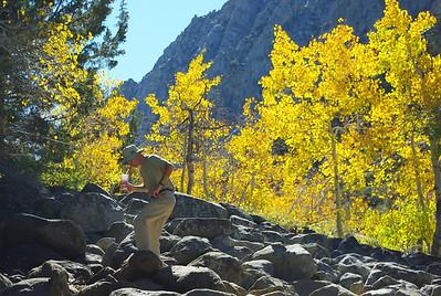 Rock Creek Canyon Eastern Sierras California Oct 2011