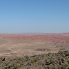 Day 23 (11) Petrified Forest