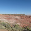 Day 23 (10) Petrified Forest