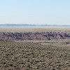 Day 23 (13) Petrified Forest