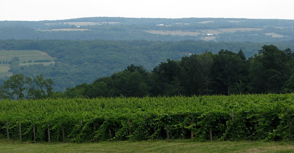 2012 NYS Southern Tier Wine Country