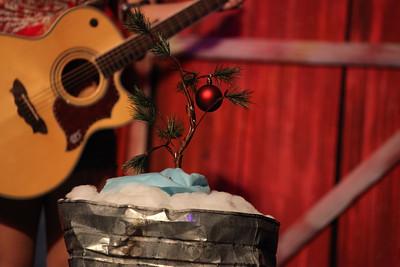 Hatfields & McCoys Dinner Show - Christmas Tree