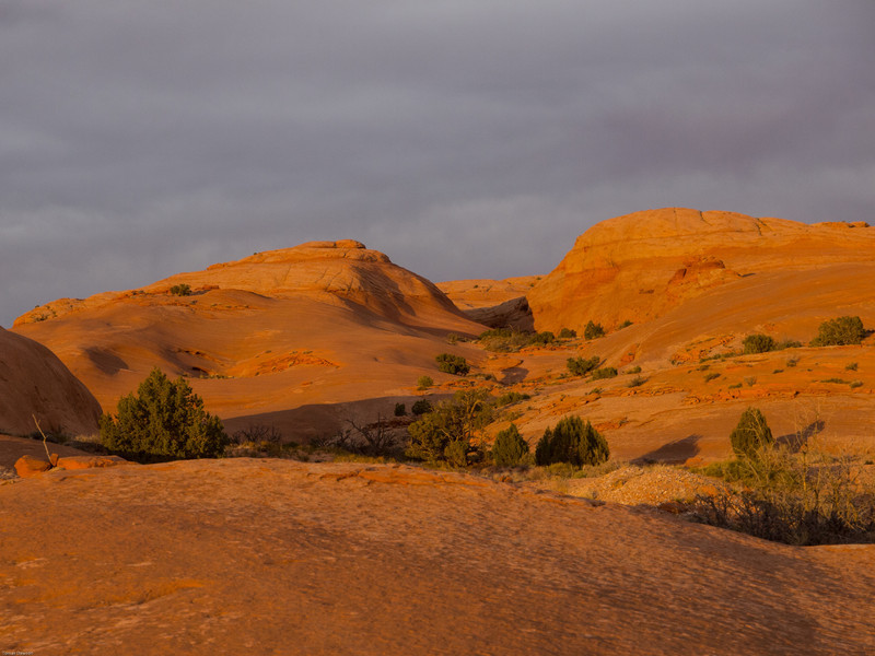 Camp one<br /> Sunset on the slickrock