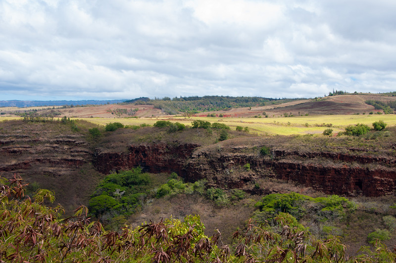 "On our way to hiking in Waimea Canyon.  Waimea means ""red"" in Hawaiian and the dirt here is exactly that."