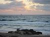 20120315 West Palm Beach (42)