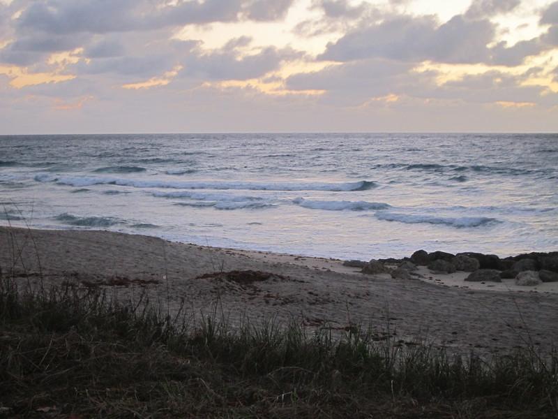 20120315 West Palm Beach (4)