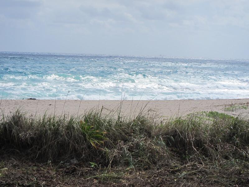 20120311 West Palm Beach (64)