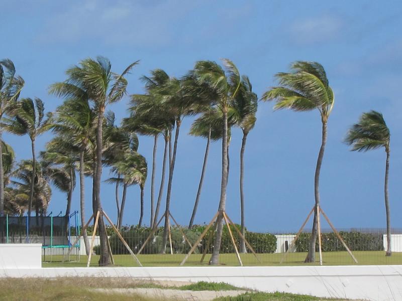20120311 West Palm Beach (62)