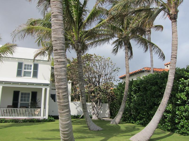 20120311 West Palm Beach (68)