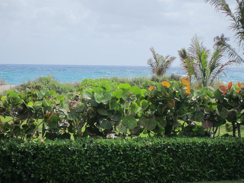 20120311 West Palm Beach (65)