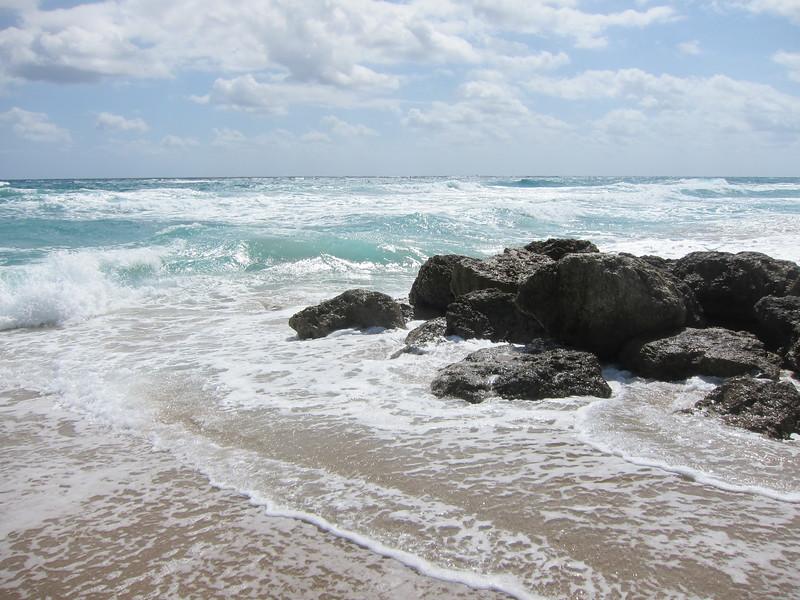 20120311 West Palm Beach (13)