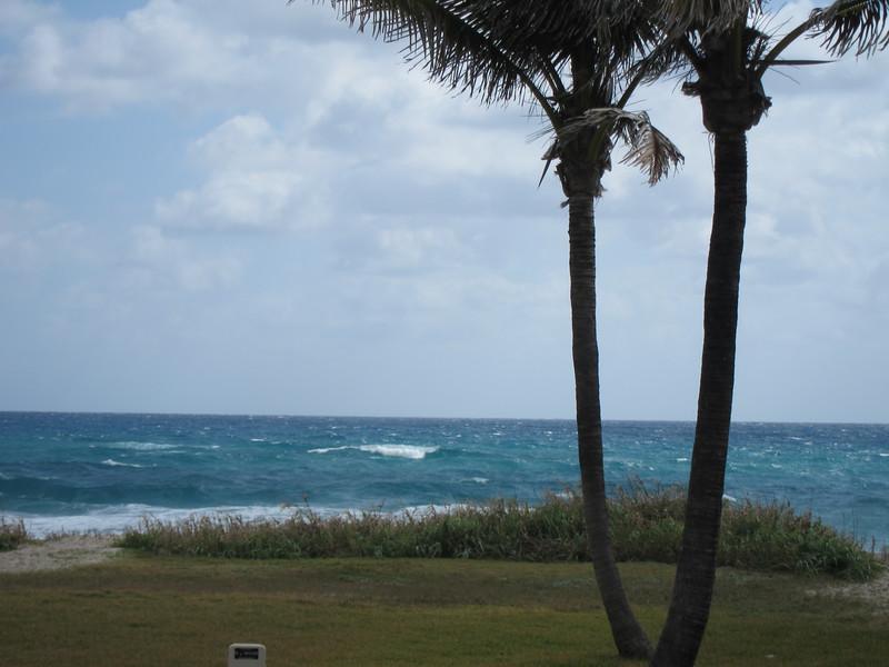 20120311 West Palm Beach (76)