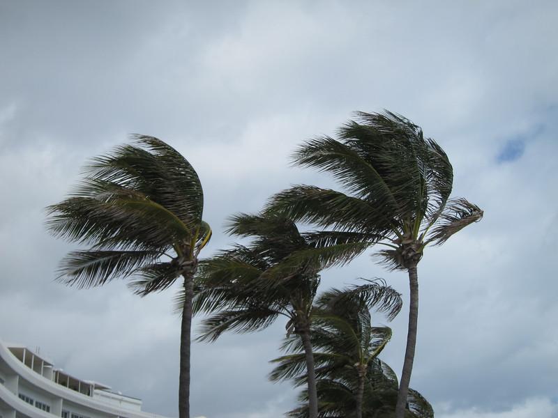 20120311 West Palm Beach (77)