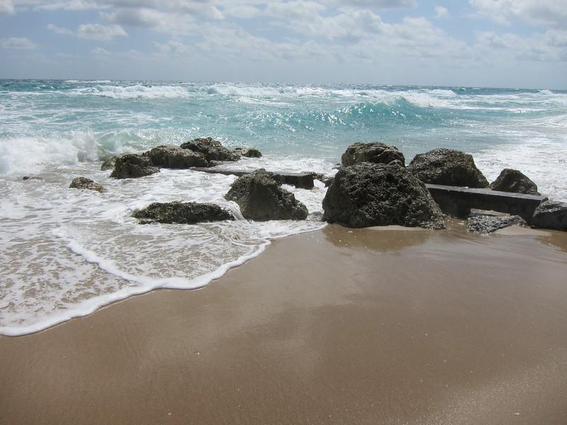 20120311 West Palm Beach (18)