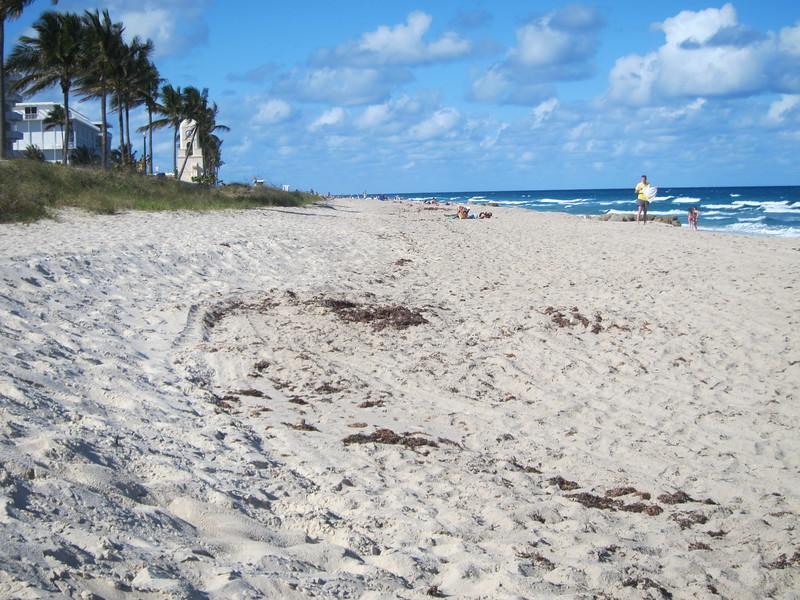 20120314 West Palm Beach (6)