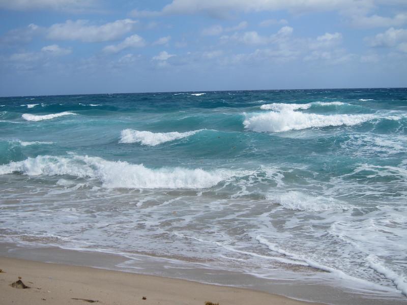 20120311 West Palm Beach (35)