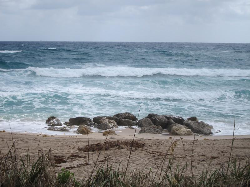 20120311 West Palm Beach (86)