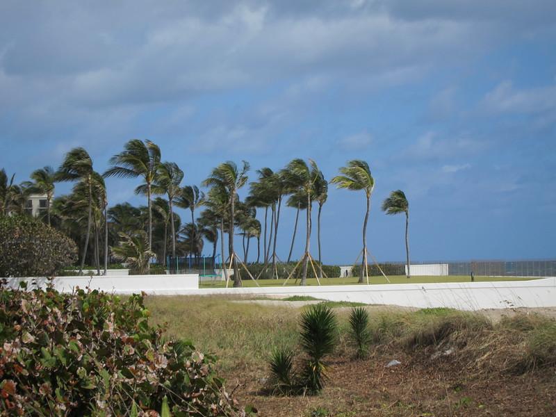 20120311 West Palm Beach (61)