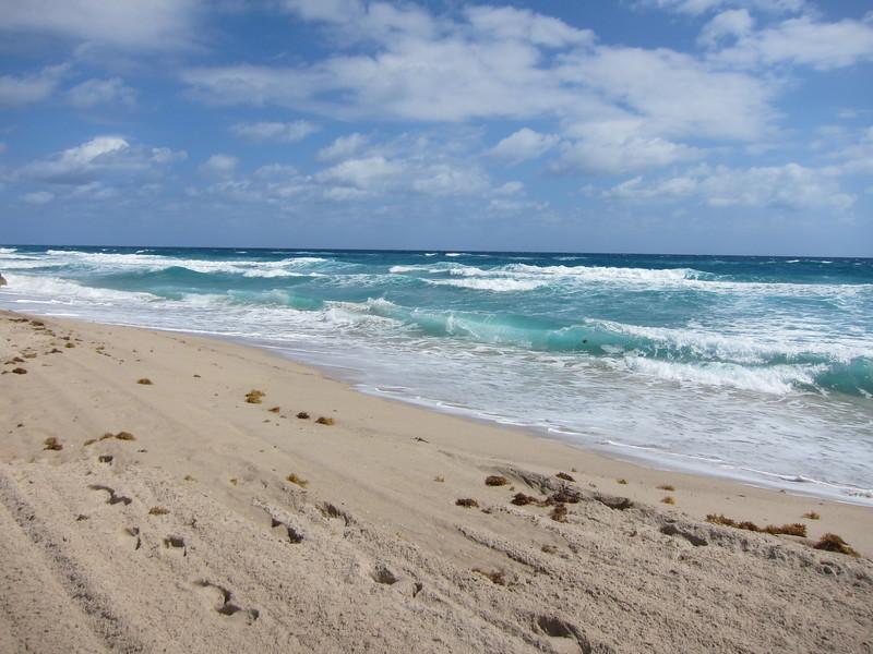 20120311 West Palm Beach (8)
