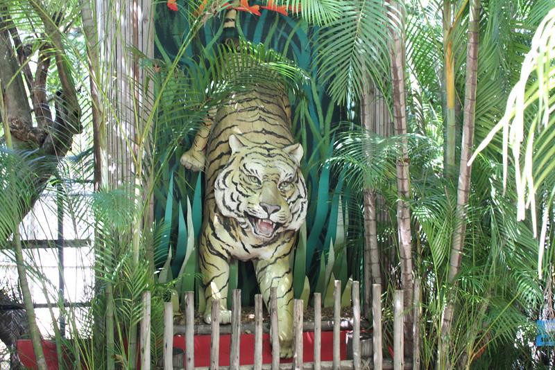 20120312 West Palm Beach Zoo (37)