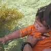 Tyson playing with fishes!