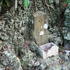 This is a very small shrine I found on a hill above the shrines.  It is about the width of my hand.