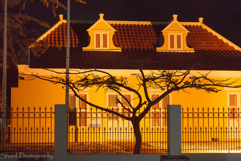A local tree stands out against an illuminated historic house on Aruba.