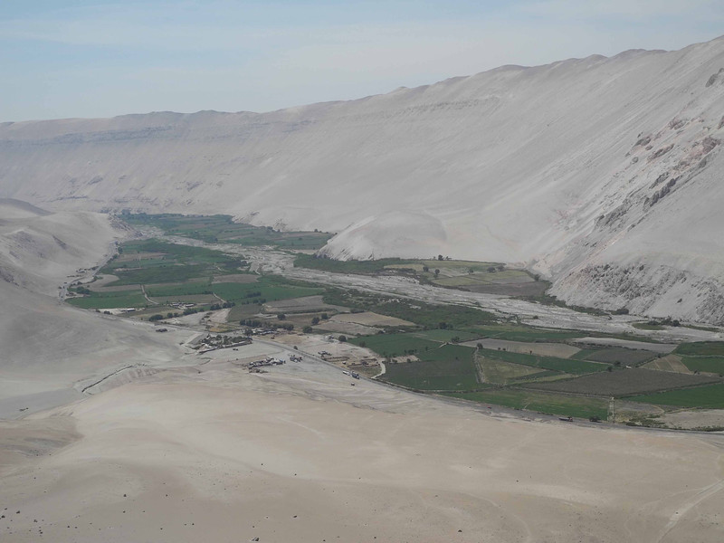 909 The irrigated valley below the Atcama Desert