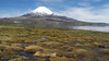 873 Parinacota and Lake Chungara