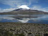 886 Parinacota and Lake Chungara