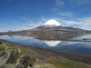 881 Parinacota and Lake Chungara