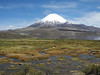 869 Parinacota rises to 20,827 feet behind Lake Chungara