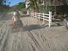 2013 Katie & JoJo Costa Rica (362)