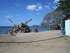 2013 Katie & JoJo Costa Rica (320)