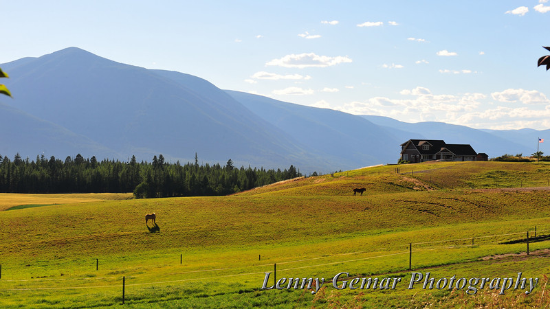 A horse ranch in the valley.