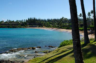 2013 08 01-Maui 031