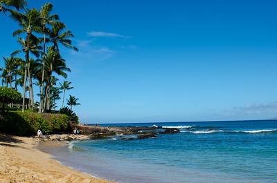 2013 08 01-Maui 038