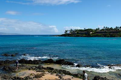 2013 08 01-Maui 029
