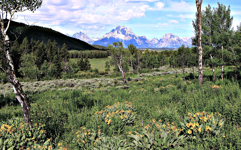View of the Tetons from Lozier Hill
