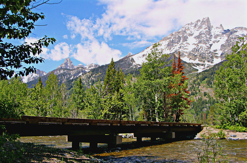 Bridge to Lupine Meadows