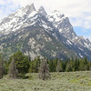 Movie: The Teton Range