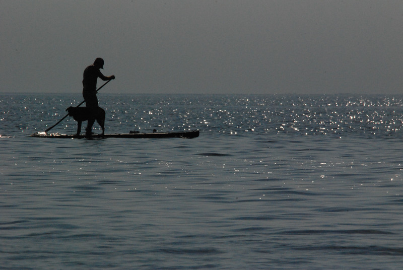Guy paddle-boarding with his dog.  Lake Superior,  town of Two Harbors, MN.  Sept. 9, 2014