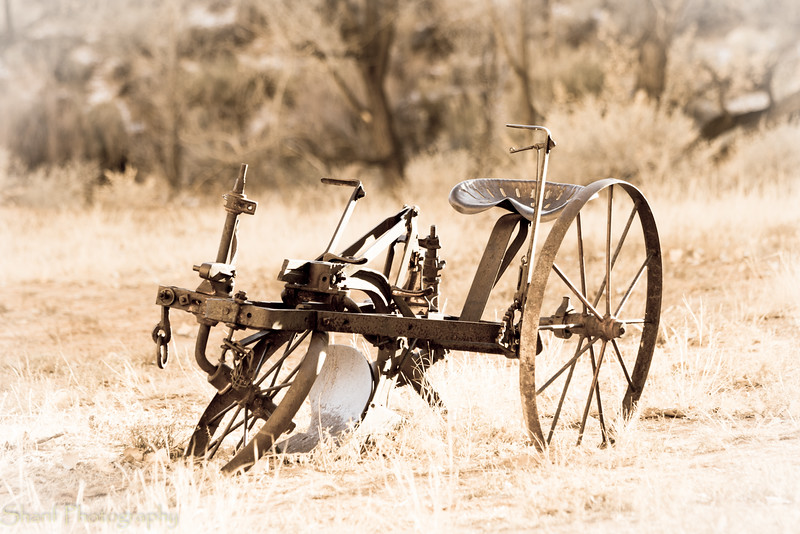Old farm equipment abounds
