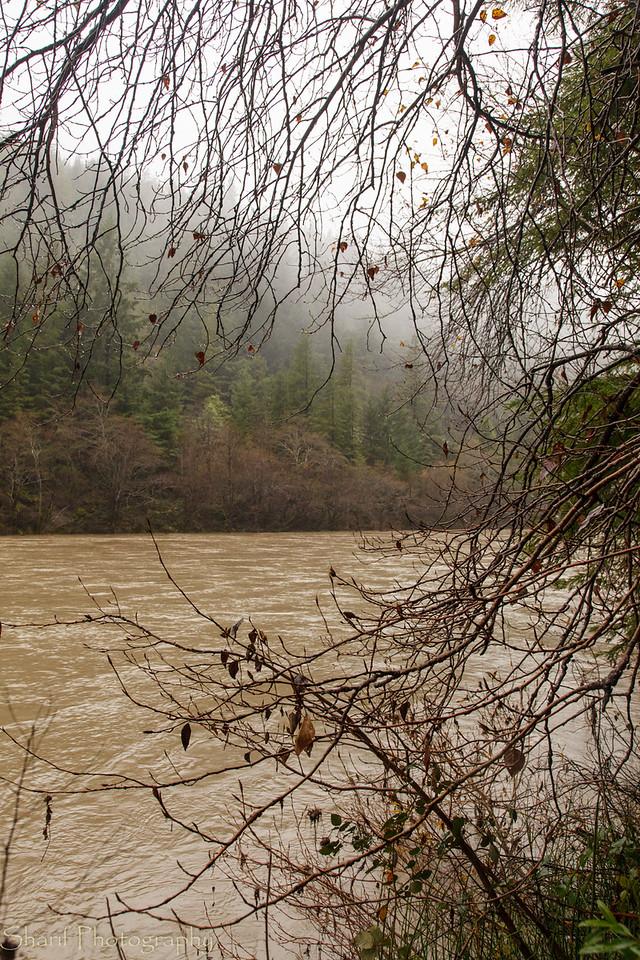 Eel River swollen