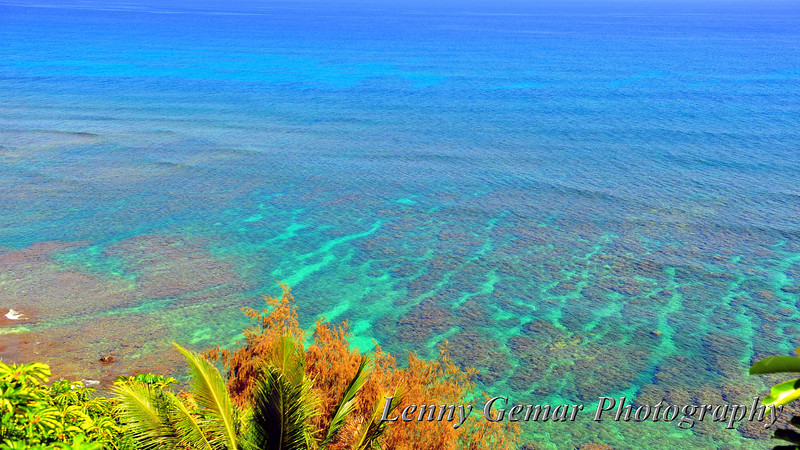 Coral reefs, perfect for snorkeling.