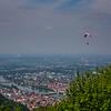 Hang Gliders at the top of Heidelberg