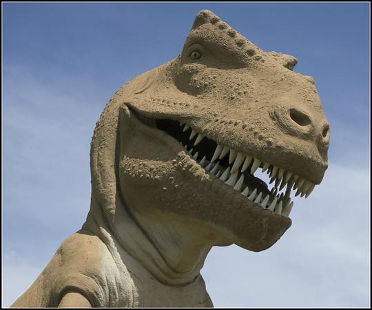 2015 June: Dinosaur Valley State Park, TX