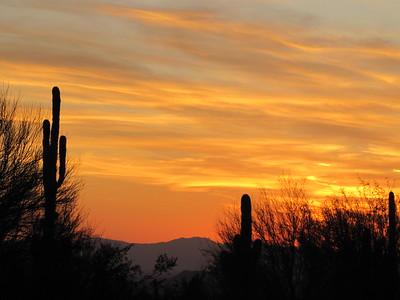 2015 Scottsdale AZ