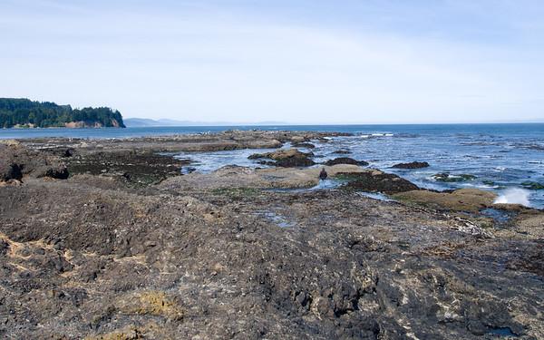low tide at Salt screek